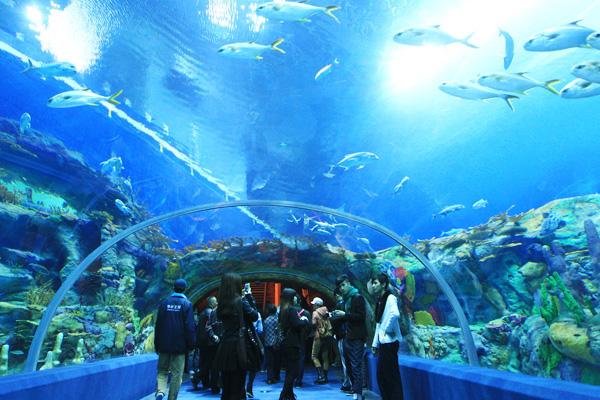 Bên trong Viện Hải dương học Nha Trang