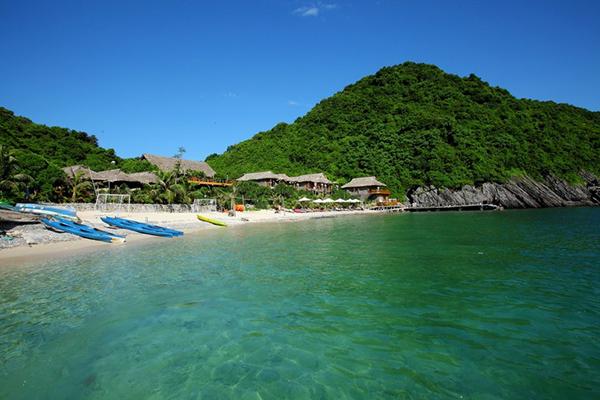 Một không gian xanh tươi mát ở Đảo Cát Bà