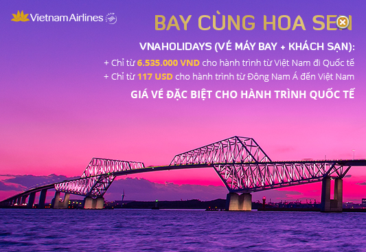 ve-may-bay-di-vietnam-airlines-1